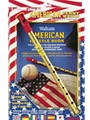 Learn  to Play the American Penny Whistle for Complete Beginners - twin pack