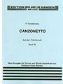 Canzonetta From Violin Concerto In D Op.35