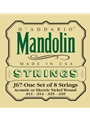 String--mandolin  D'addario - Regular           J6 - Nickel Wound
